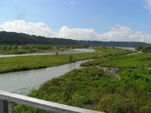 蓬莱橋からの眺め